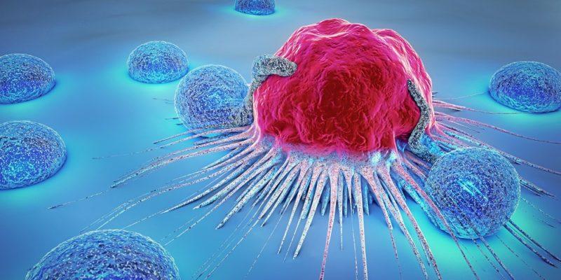 پیشگیری از سرطان با مصرف جینسینگ