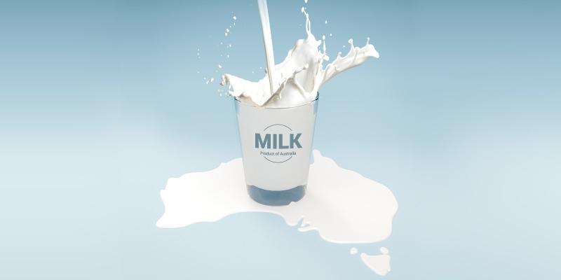 تأثیر شیر شتر بر کبد چرب