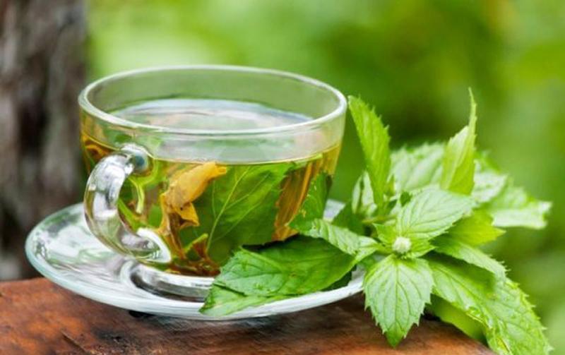 در حین کار کردن چای سبز بنوشید